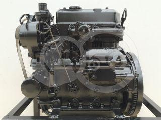 Dízelmotor Iseki E383 (2)